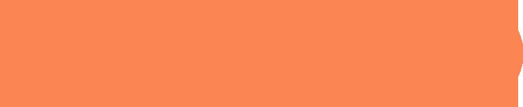 LOGOtrans oranGE smaller